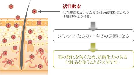 活性酸素の皮膚への影響